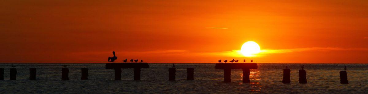 Karibischer Sonnenuntergang am Strand in Curacao nach dem Tauchen