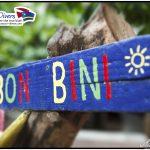 Bon Bini Curacao Divers Deutsche Tauchschule Tauchen Tauchurlaub Urlaub entspannen Unterwasser Non Limit Freiheit selbstständig Karibik Strände Beach