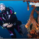 Taucherin beim tauchen Curacao Divers Deutsche Tauchschule Tauchen Tauchurlaub Urlaub entspannen Unterwasser