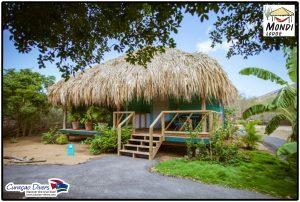 Curacao-Divers Mondi Lodge tauchen Urlaub image-2014-09-29 (2)a