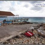 Playa Grando oder Playa Piskado in Westpunt Curacao Viele SChildkröten gibt es direkt zum Tauchen oder Schnorcheln vom Strand aus