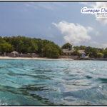 Playa Kalky wird der Strand in Westpunt genannt und der Tauchplatz nennt sich Alice in wonderland aus dem Tauchreiseführer von Curacao auf Amazon zu erwerben