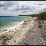 Der lange Korallenstrand mit dem namen Playa Largu in San Juan Curacao. Aus dem Tauchreiseführer Curacao