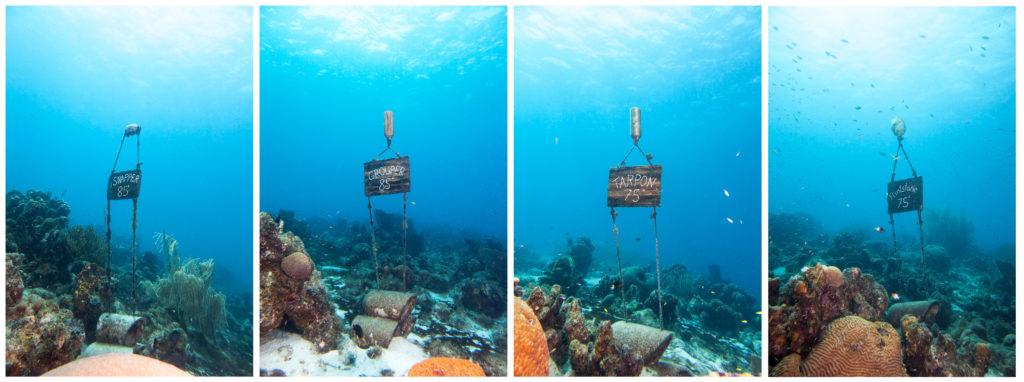 Wegweiser unterwasser für die Bungalows im Sun Reef Village on Sea bei den Curacao DIvers
